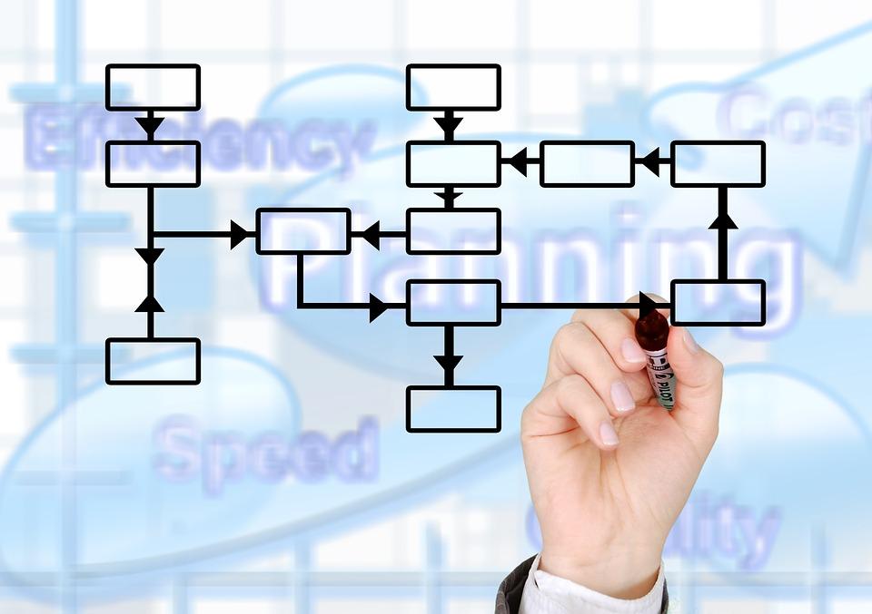 information-organization